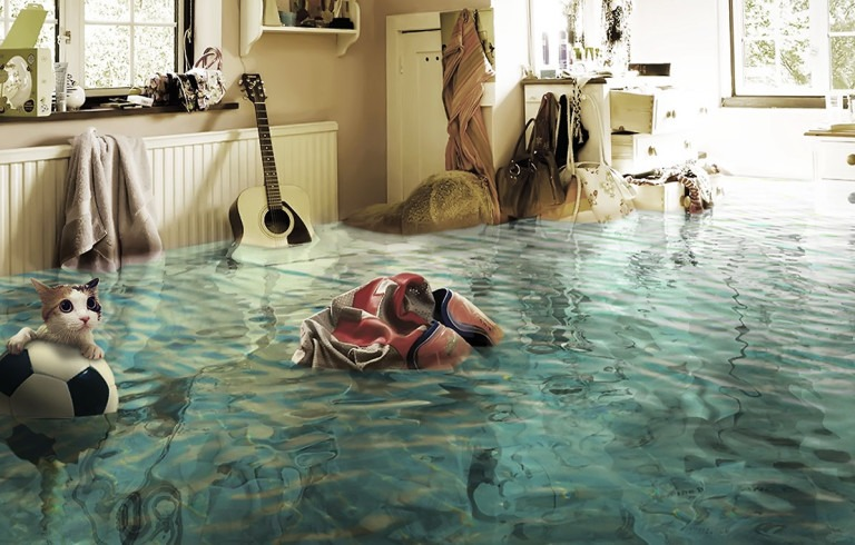 потом дома, затопили соседи, квартира в воде, кошка на мячике
