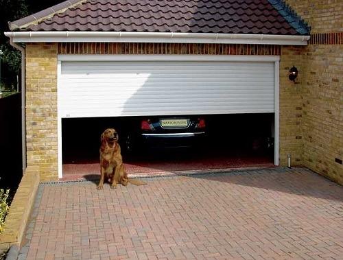 гараж,собака у дома,